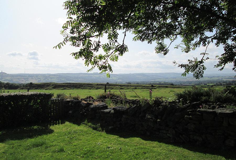 Residential Park Views